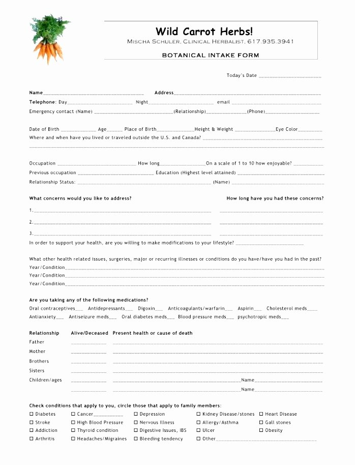 Physical therapy forms Template New 10 Physical therapy Intake form Template Jruai