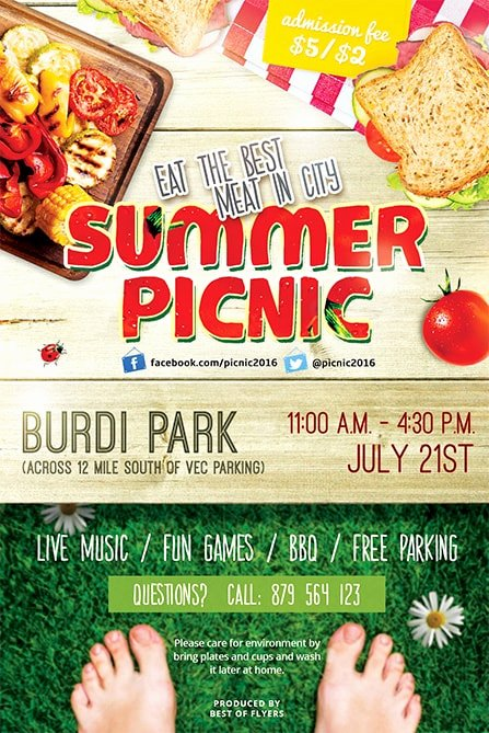 Picnic Flyer Template Free Beautiful Summer Picnic Free Psd Flyer Template