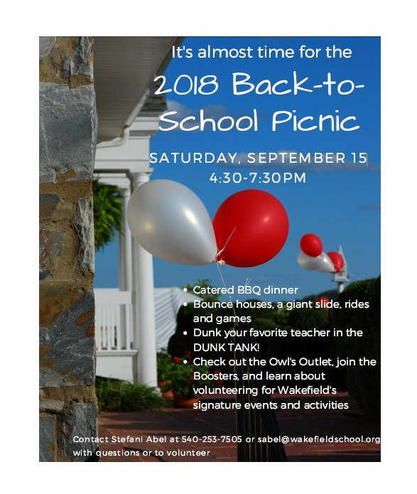 Picnic Flyer Template Free Unique 45 Awesome Picnic Flyer Templates Free Download