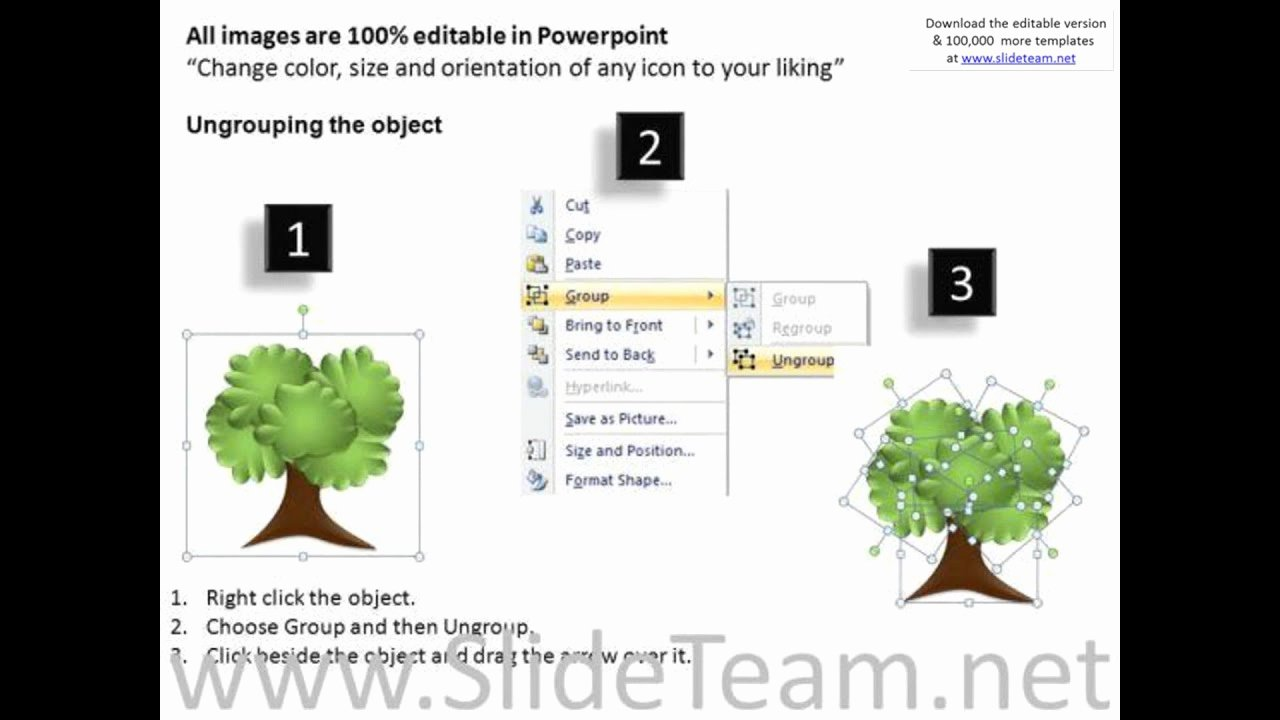 Powerpoint Family Tree Template Best Of Research Family Tree Powerpoint Templates Presentation