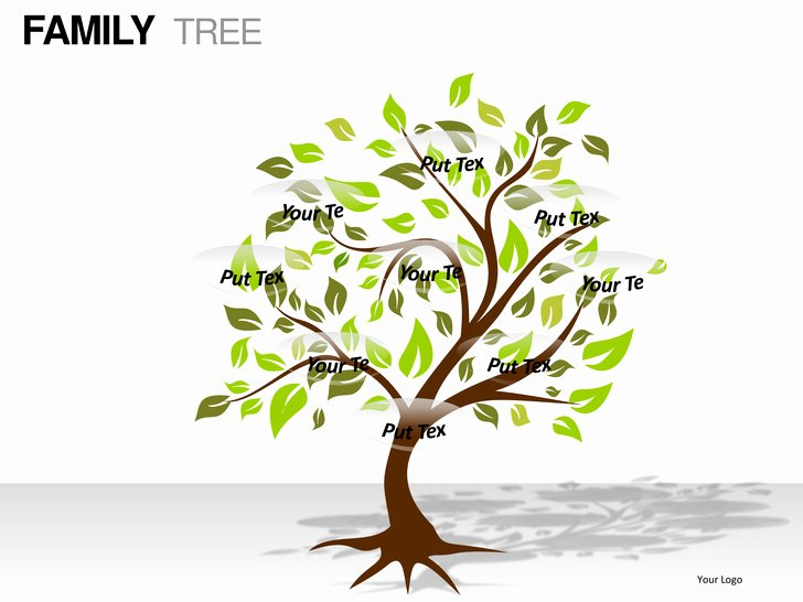 Powerpoint Family Tree Template Fresh Family Tree Powerpoint Presentation Templates