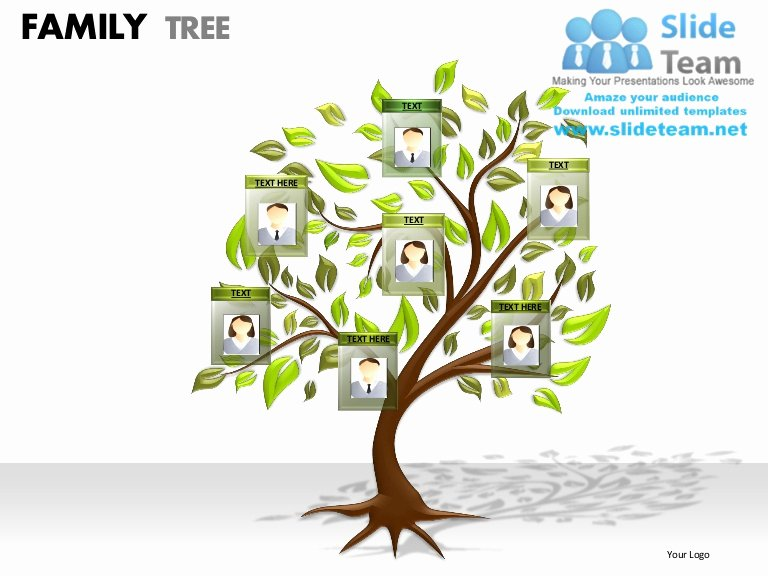 Powerpoint Family Tree Template Inspirational Family Tree Powerpoint Presentation Slides Ppt Templates