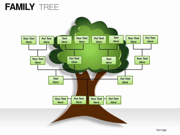 Powerpoint Family Tree Template Luxury Family Tree Powerpoint Presentation Templates