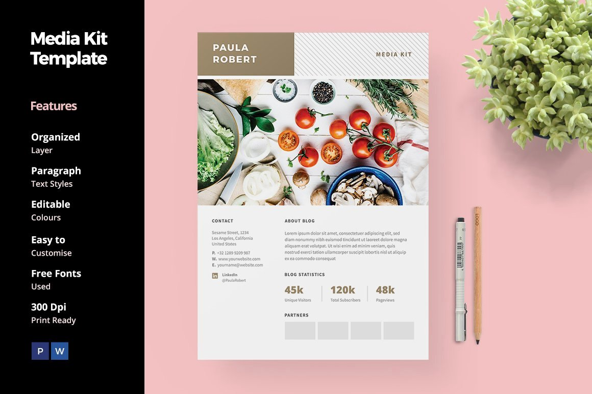 Press Kit Template Free Awesome Media Kit for Blogger social Media Templates Creative