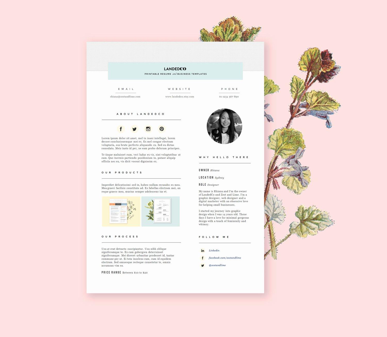 Press Kit Template Free Beautiful Chandeliers & Pendant Lights