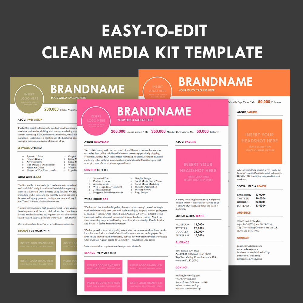 Press Kit Template Free Fresh Media Kit Screen3