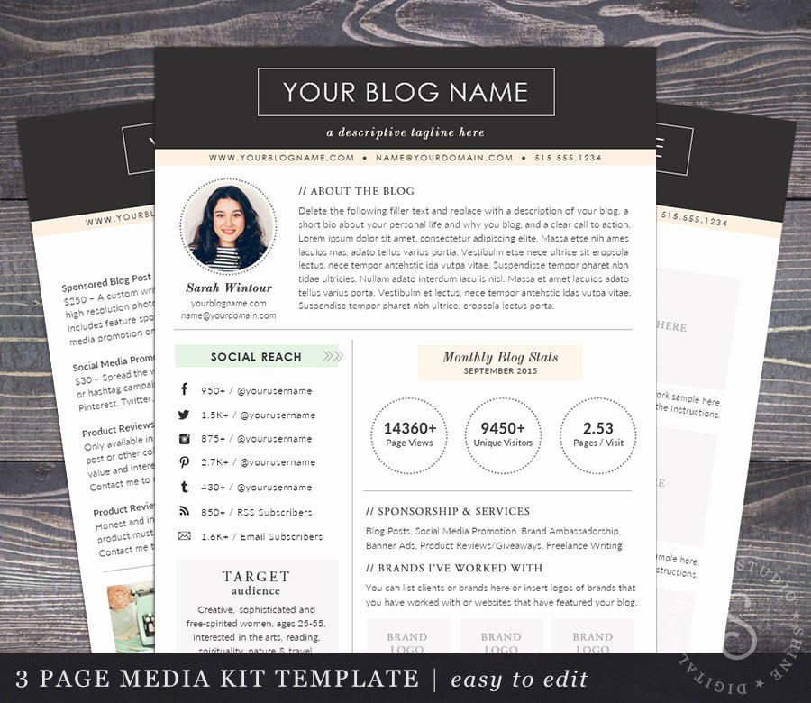 Press Kit Template Free Luxury Media Kit Template the Modern Darling Mac or Pc Word and