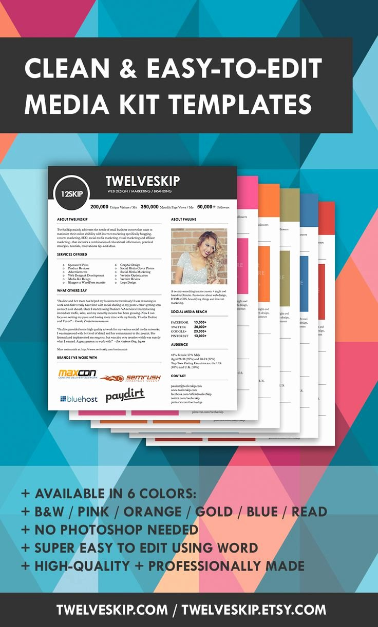 Press Kit Template Free New 32 Best Images About Media Kit Design Examples On