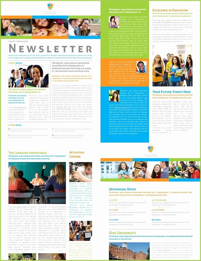 Print Newsletter Template Free Elegant 10 Classroom Newsletter Templates Free and Printable