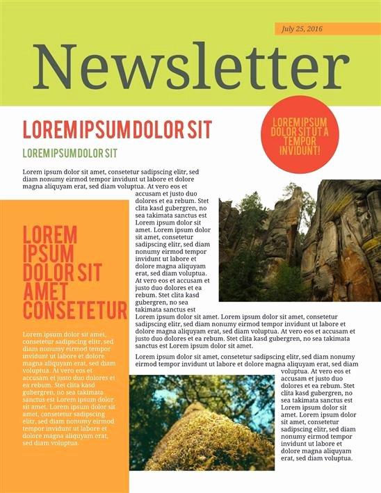 Printable Newsletter Templates Free Luxury Best Newsletter Templates