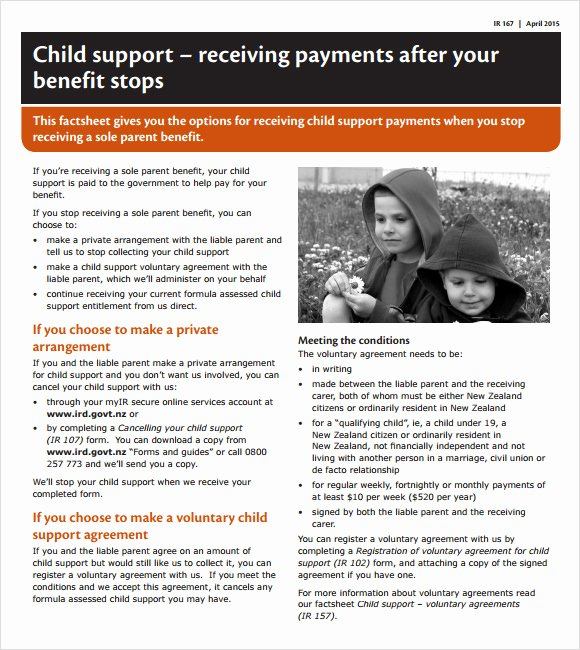 Private Child Support Agreement Template Luxury Sample Child Support Agreement 7 Example format