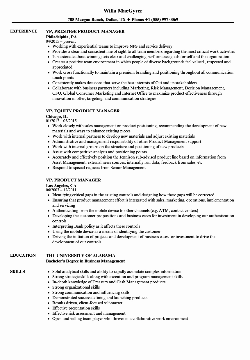 Product Manager Resume Template Beautiful Vp Product Manager Resume Samples