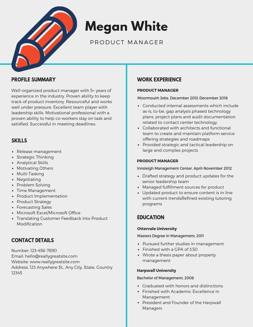 Product Manager Resume Template Inspirational Product Manager Resume Samples Templates Pdf Word