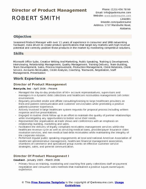 Product Manager Resume Template New Director Of Product Management Resume Samples