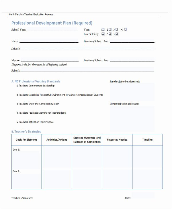 Professional Growth Plan Templates Lovely 27 Development Plan Templates Pdf Word