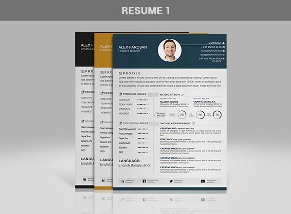 Professional Portfolio Cover Page Template Inspirational Free Professional Resume Cv Template In 3 Different