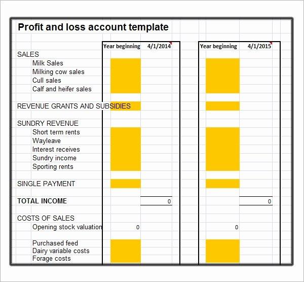 Profit and Loss Template Free Beautiful Profit and Loss Template 20 Download Free Documents In