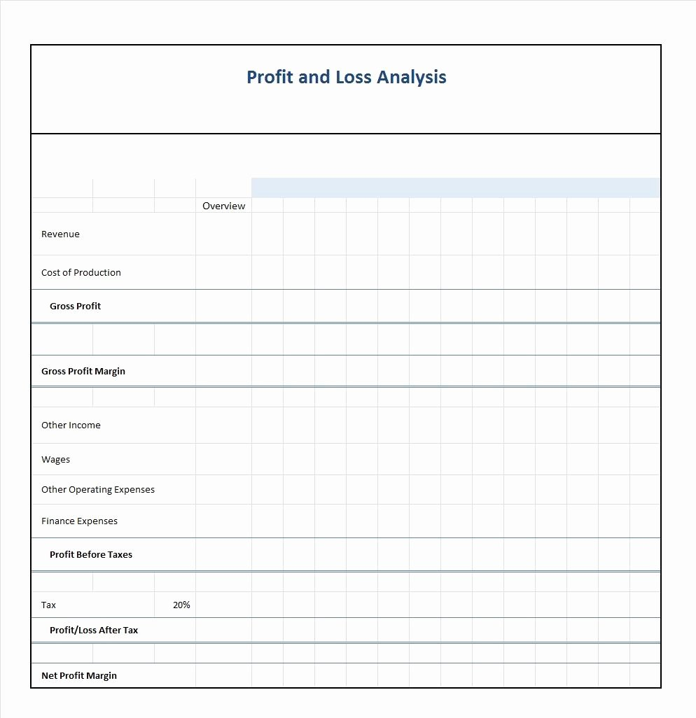 Profit and Loss Template Free Inspirational 35 Profit and Loss Statement Templates & forms