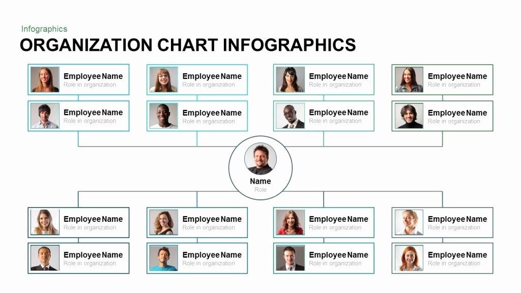 Project organization Chart Template Beautiful organization Chart Infographics Powerpoint and Keynote