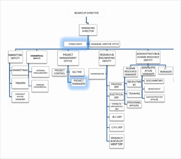 Project organization Chart Template Best Of Sample Project organization Chart 14 Free Documents In