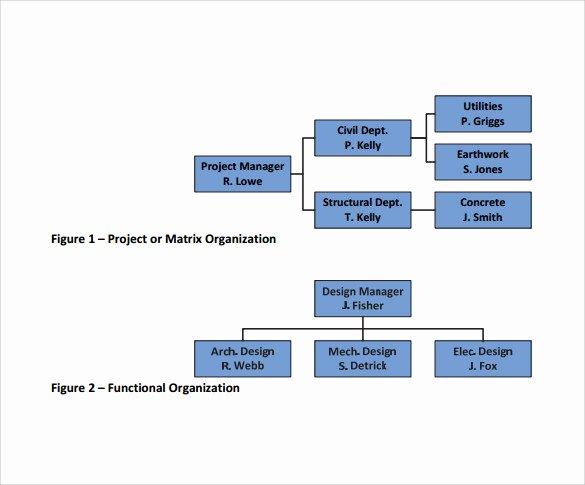 Project organization Chart Template Elegant Sample Project organization Chart 14 Free Documents In