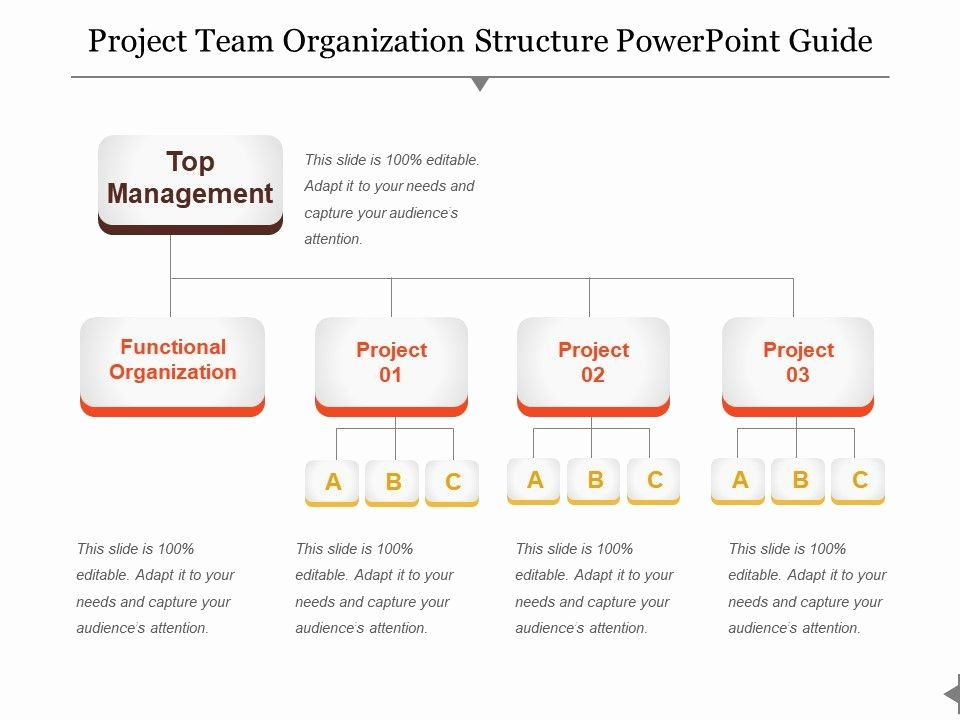 Project organization Chart Template Fresh Project Team organization Structure Powerpoint Guide