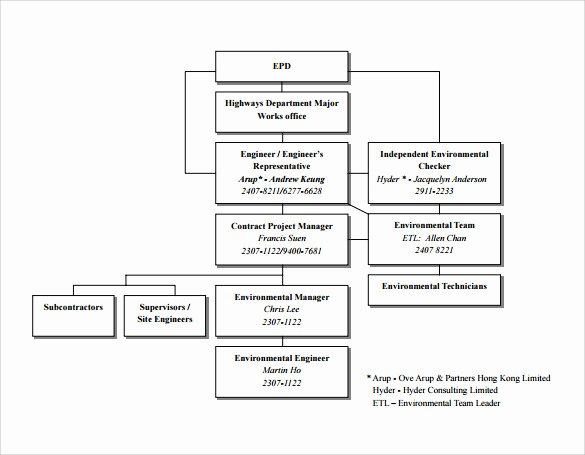 Project organization Chart Template Luxury Sample Project organization Chart 14 Free Documents In