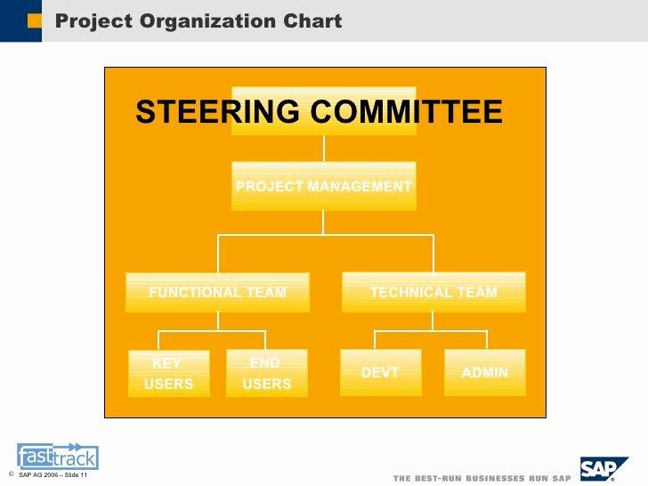 Project organization Chart Template Luxury Sap Sample