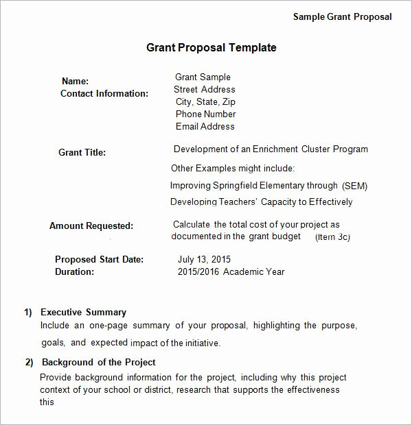 Proposal for Funding Template New Free 17 Sample Grant Proposal Templates In Word Pdf
