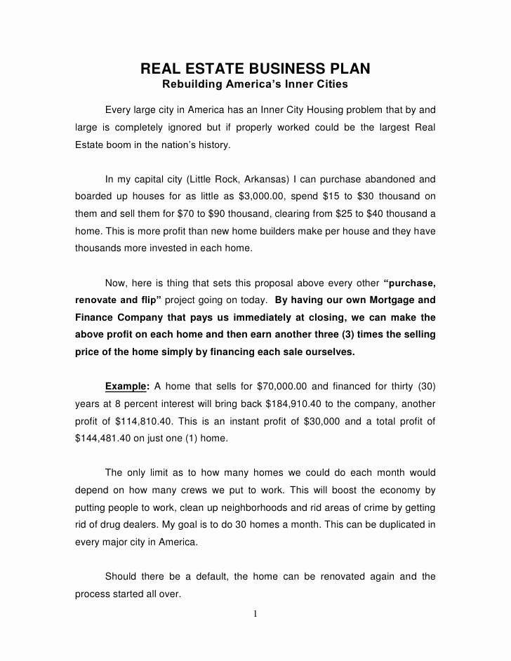 Real Estate Investment Proposal Template Luxury Real Estate Business Plan