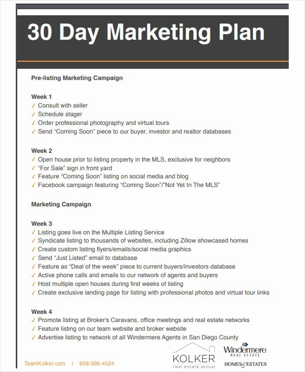 Real Estate Marketing Plan Template Awesome 11 Basic Real Estate Marketing Plan Templates Pdf Word