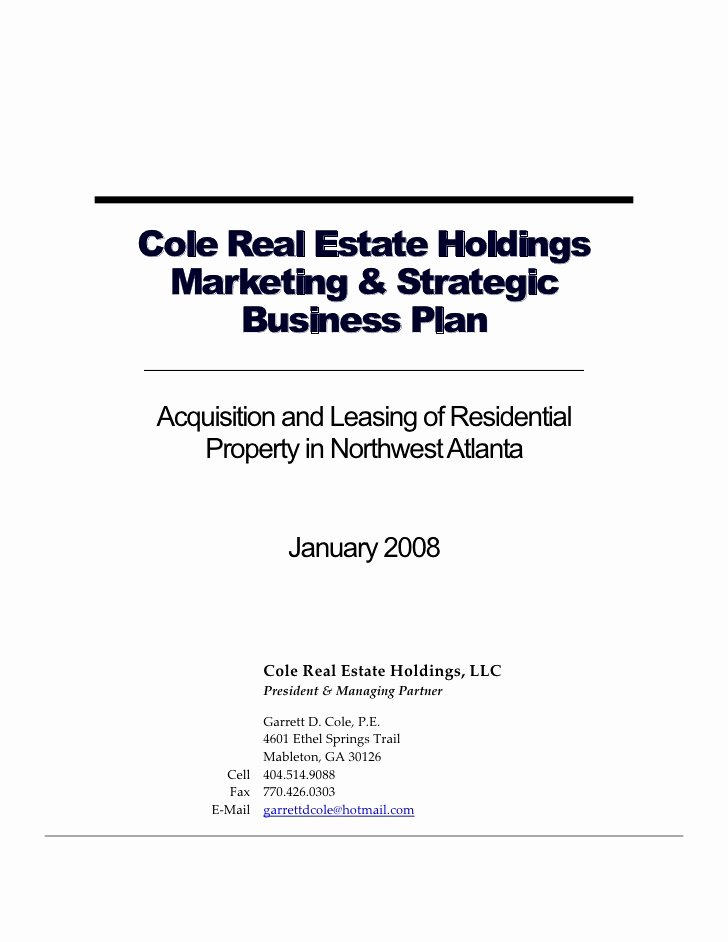 Real Estate Marketing Plan Template Fresh Business Plan