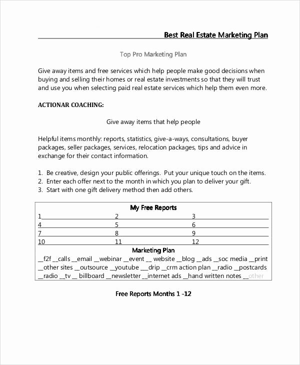 Real Estate Marketing Plan Template Unique 24 Marketing Plans In Pdf