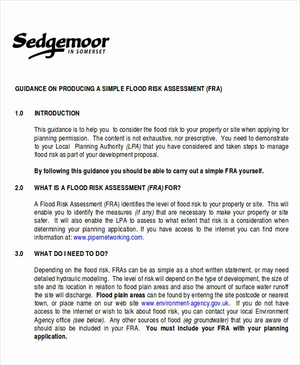 Risk assessment Report Template Beautiful 10 assessment Report format Samples Docs Word Pages Pdf