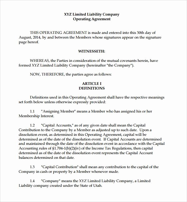 S Corp Operating Agreement Template Beautiful Sample Business Operating Agreement 7 Free Documents