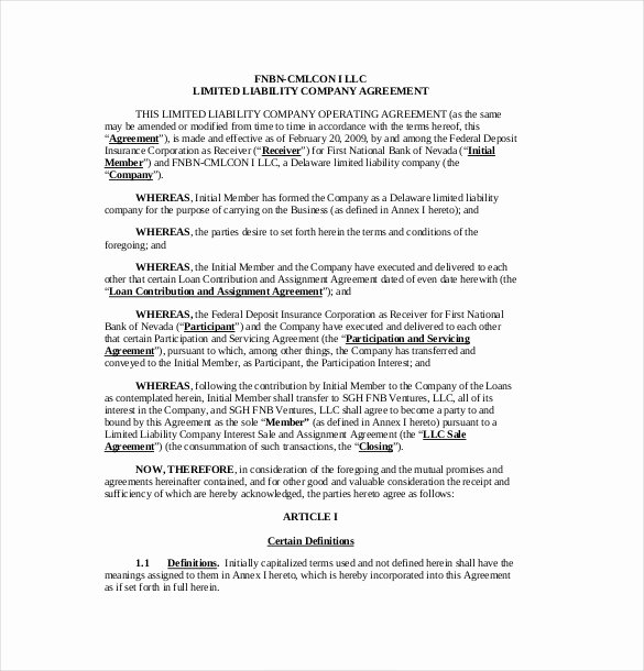 S Corporation Operating Agreement Template Awesome Operating Agreement for S Corp Template Jumboerogon
