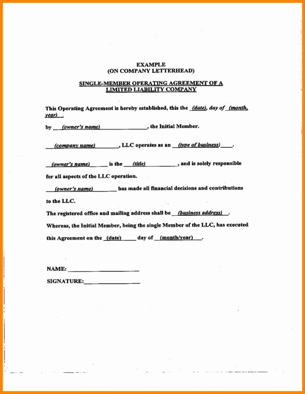 S Corporation Operating Agreement Template Beautiful Operating Agreement Samples