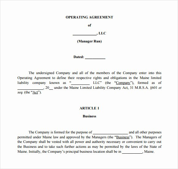 S Corporation Operating Agreement Template New 13 Sample Operating Agreements Pdf Word