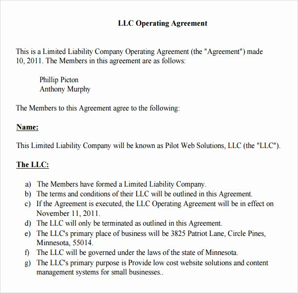S Corporation Operating Agreement Template Unique Corporation License Llc Girlbackup