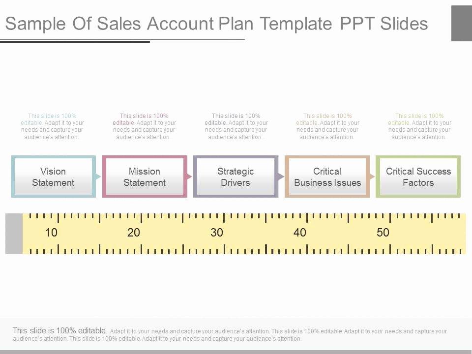Sales Plan Template Ppt Elegant View Sample Sales Account Plan Template Ppt Slides