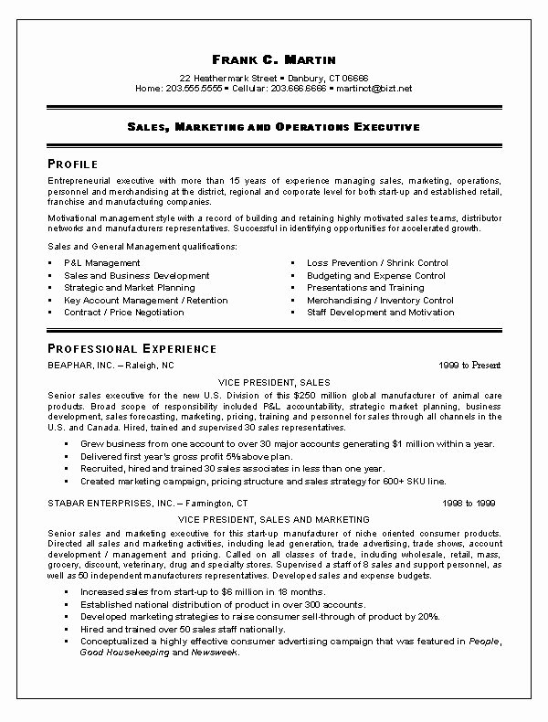 Sales Resume Template Word Best Of 1000 Images About Resume Example On Pinterest