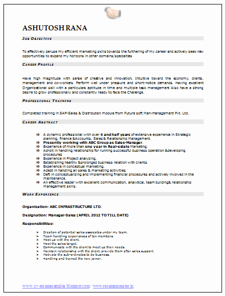 Sales Resume Template Word Lovely Professional Curriculum Vitae Resume Template Sample