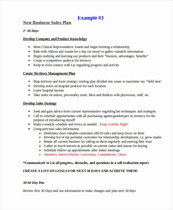 Sales Strategy Plan Template Elegant Sales Plan Example