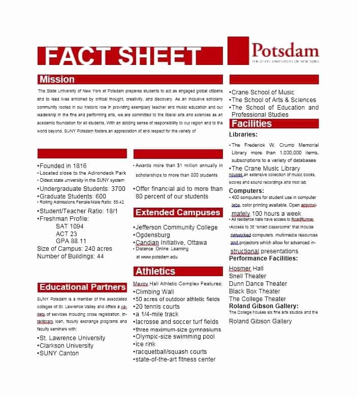 Sample Fact Sheet Template Best Of 10 Fact Sheet Templates Excel Pdf formats