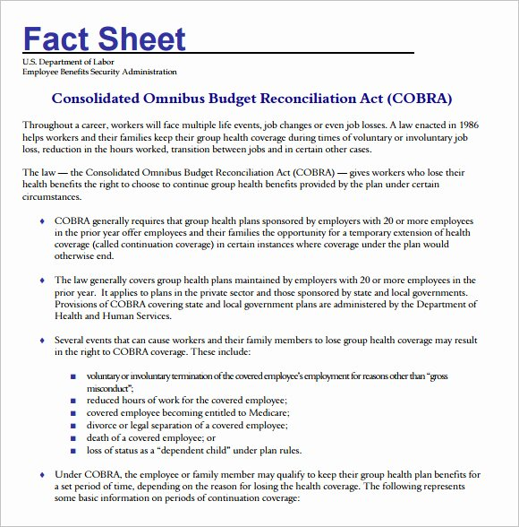 Sample Fact Sheet Template New Fact Sheet Template – 12 Download Documents In Pdf Word