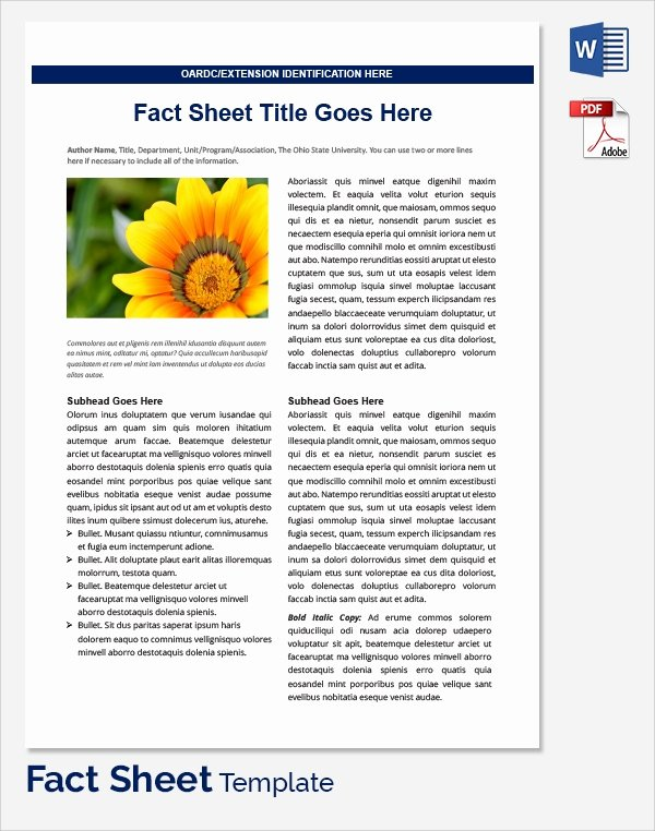 Sample Fact Sheet Template Unique Sample Fact Sheet Template 21 Free Download Documents