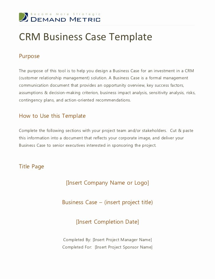 Sample Use Case Template Awesome Crm Business Case Template