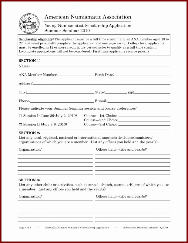 Scholarship Application form Template Lovely Scholarship Application Template