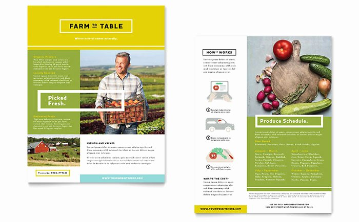 Sell Sheet Template Free New organic Food Datasheet Template Design