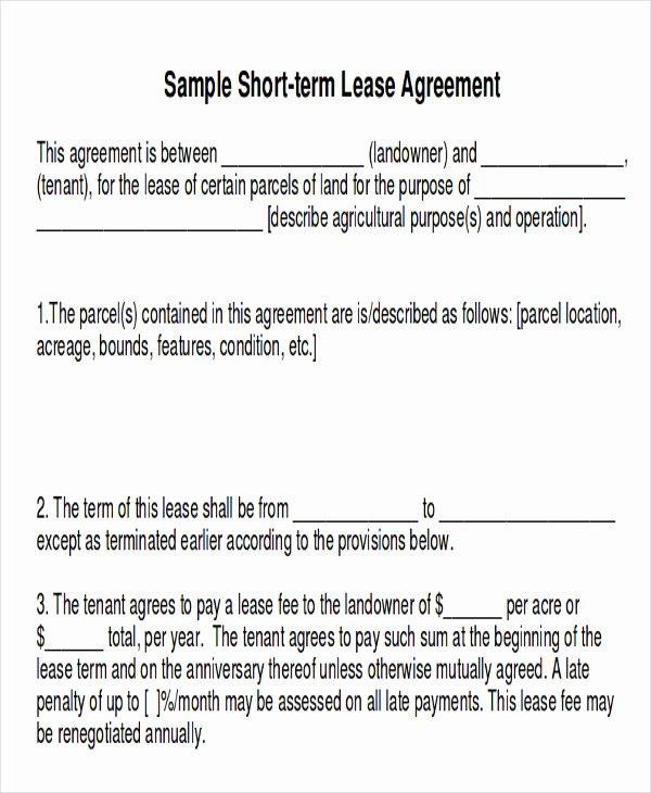 Short Term Rental Agreement Template Unique Sample Short Term Rental Agreement 10 Examples In Word Pdf